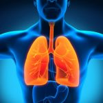 image-lungs